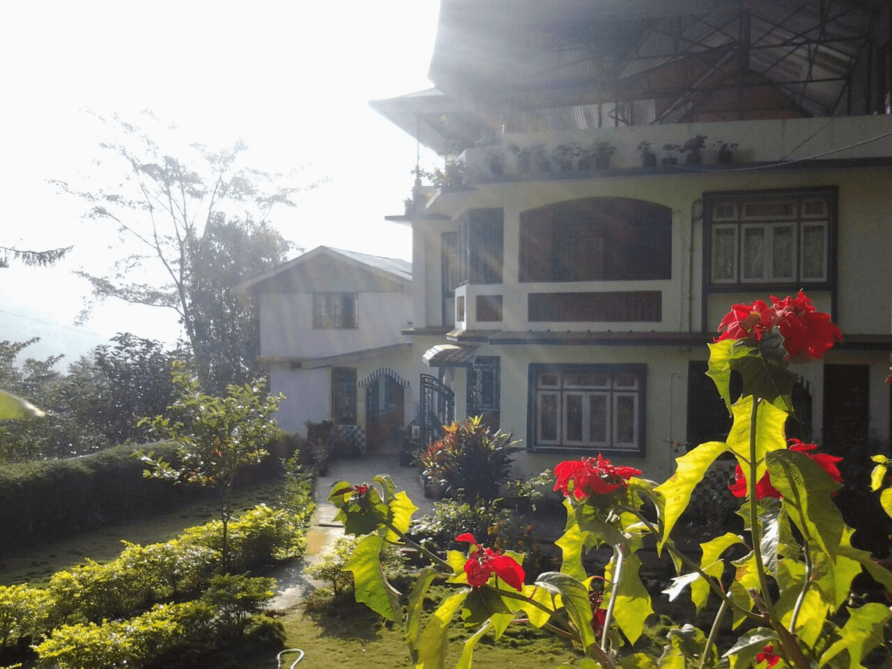a beautiful garden in a homestay