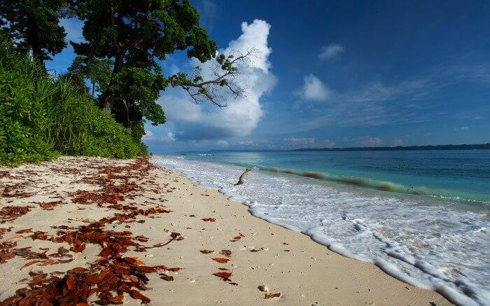 Gorgeous beach on Havelock Island
