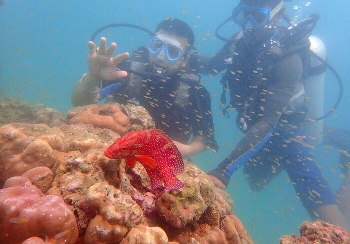 diving in andaman