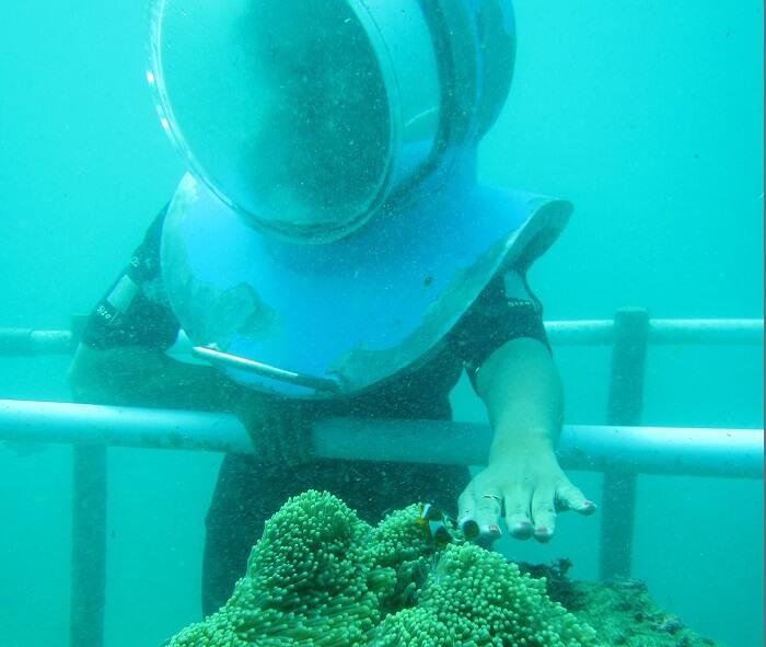 underwater sea walk activity