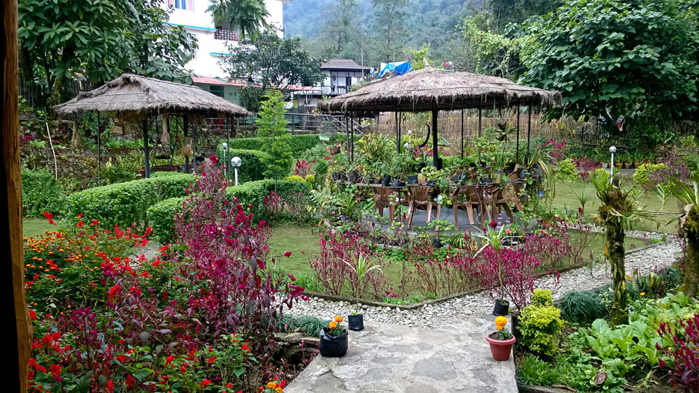 a thatched roof homestay in hills