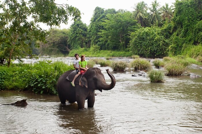 enjoy a adventure packed honeymoon in sri lanka
