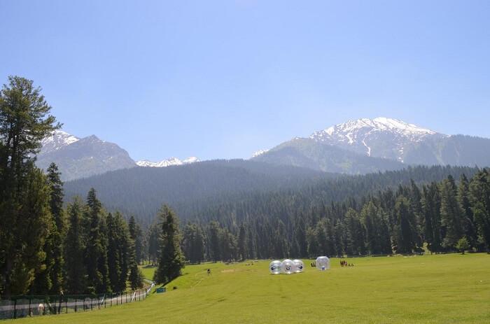 pahalgam greenery