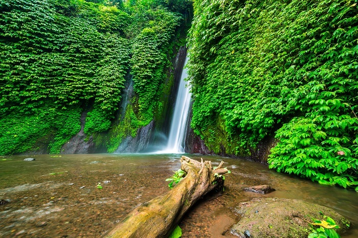 go on a hiking tour of munduk
