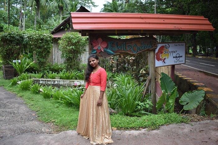 honeymoon in havelock island