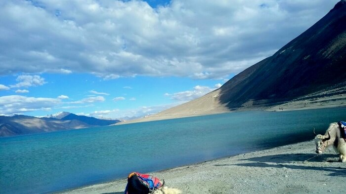lakes in ladakh