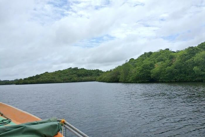 river cruise in bentota