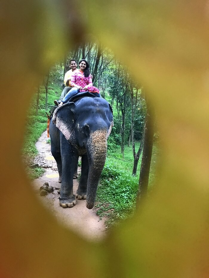 revan aarti kerala riding elephant