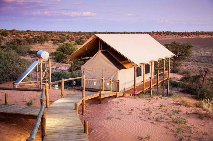 stay at luxe camps in Kgalagadi Transfrontier Park