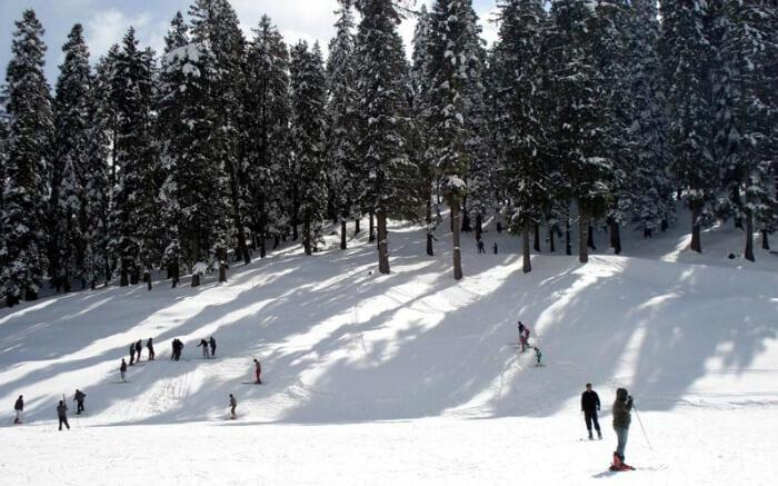 6 best places to visit in shimla in december 2018. Black Bedroom Furniture Sets. Home Design Ideas