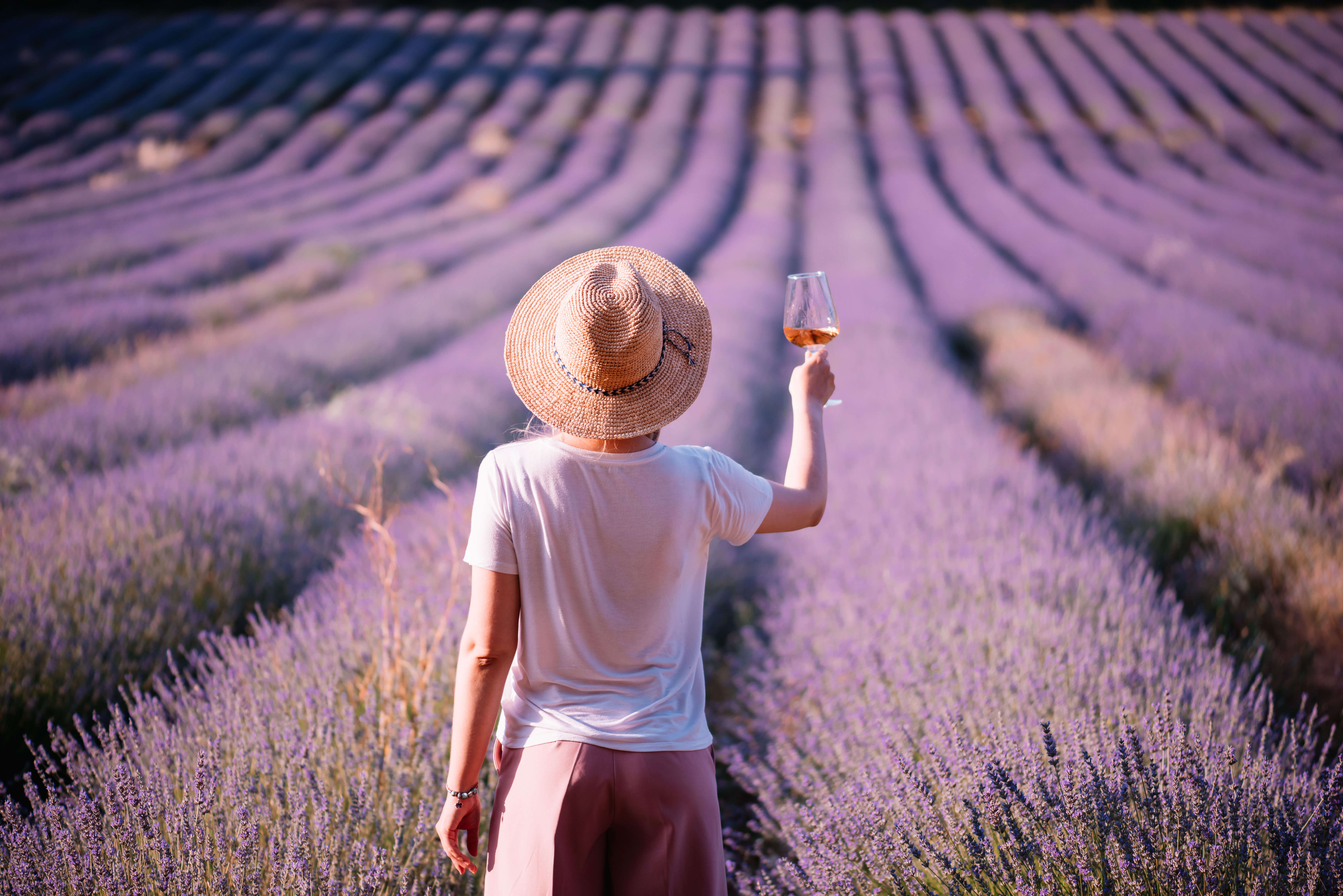 A woman holding wine glass amidst lavender field in Provence, France
