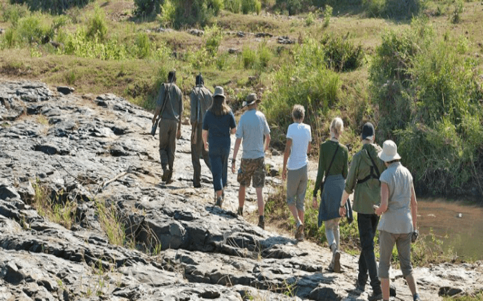 Travelers taking walking through the Nyalaland Wilderness Trail in Kruger