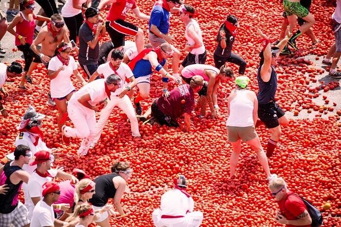 tomatina festival begins