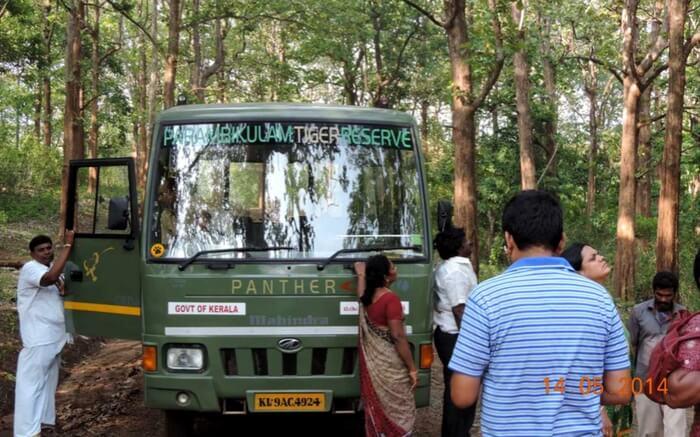 acj-2908-parambikulam-tiger-reserve- (4)