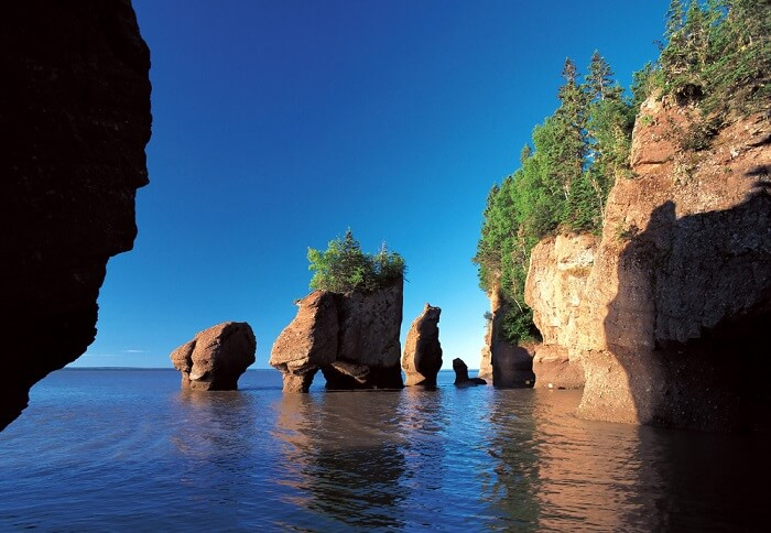 famous bay of fundy in canada