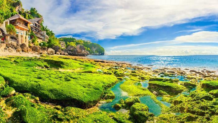 treat the sgreen shores of bingin beach