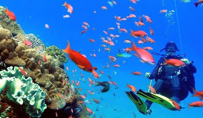 go diving in candidasa beach bali