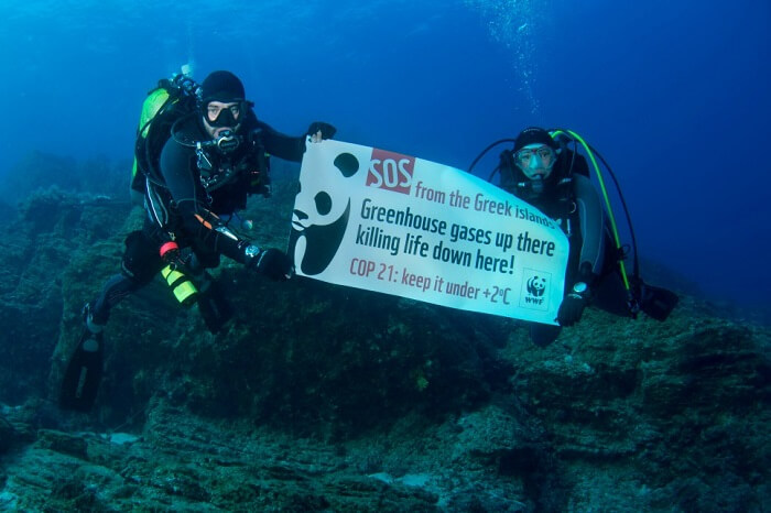 A group of WWF members campaigning for the protection of marine life around Gyaros island in Greece