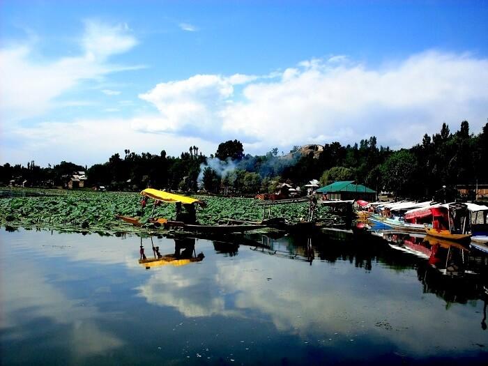 manasbal lake in kashmir