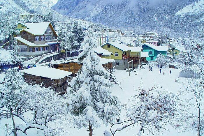 kaluk in winter
