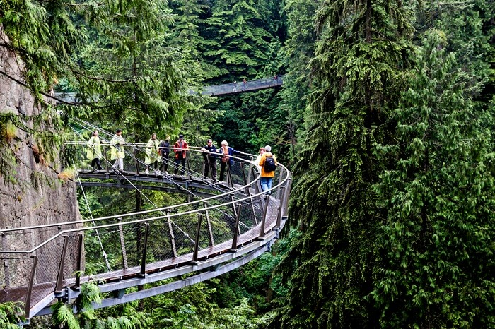 cliff walk on suspension bridge canada