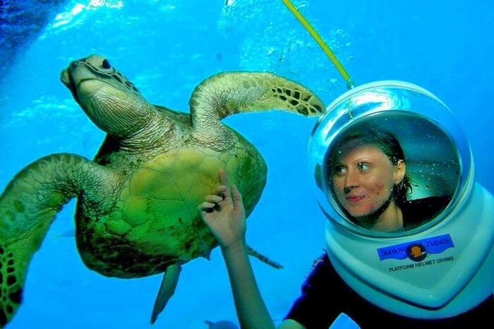go diving at tanjung benoa beach