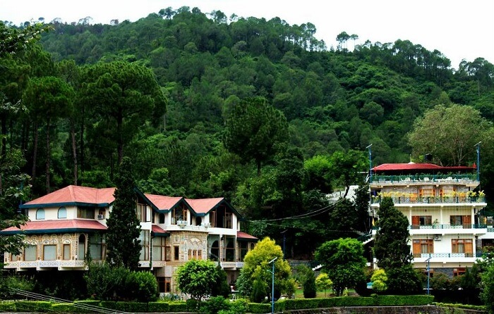 Alcor Spa Resort, Kasauli