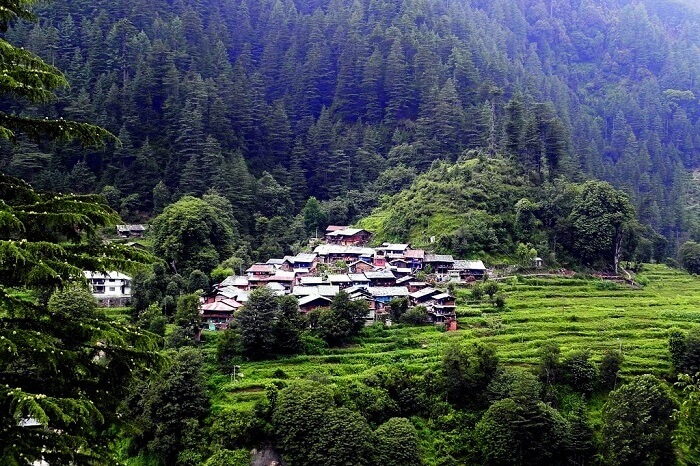 Barot, Himachal