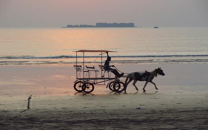 A horsecart near Kashid Beach