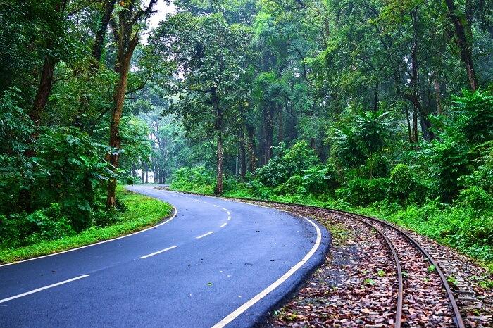 Reach Darjeeling By Road