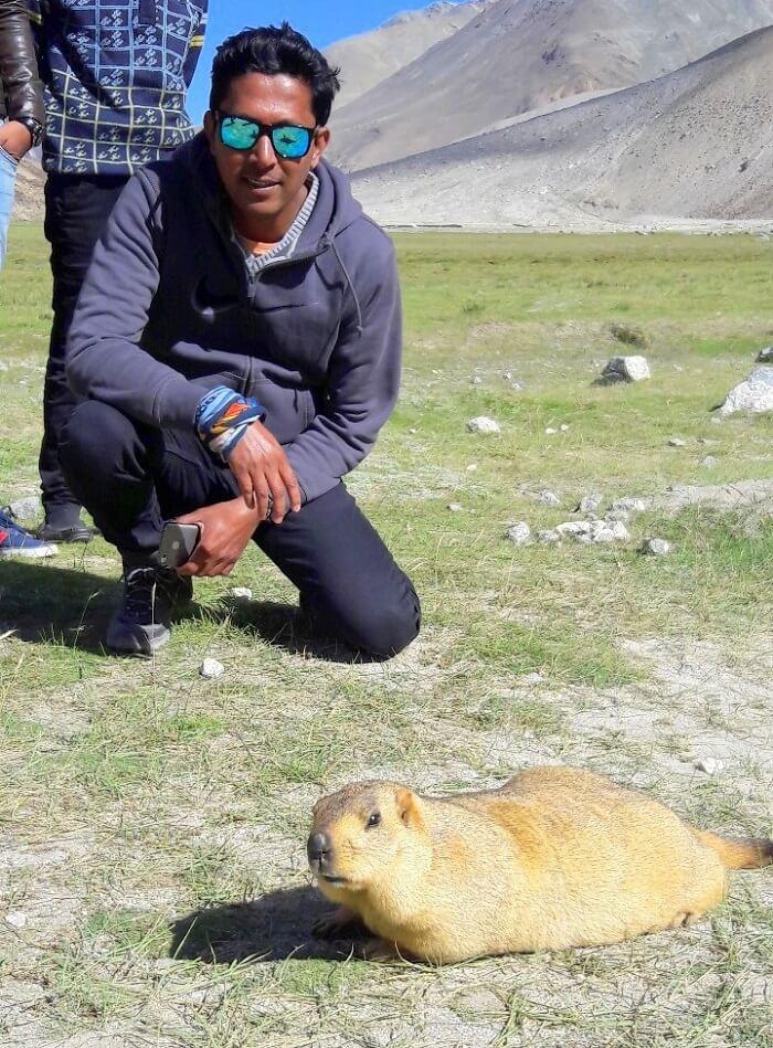 ninad meets a marmot in ladakh