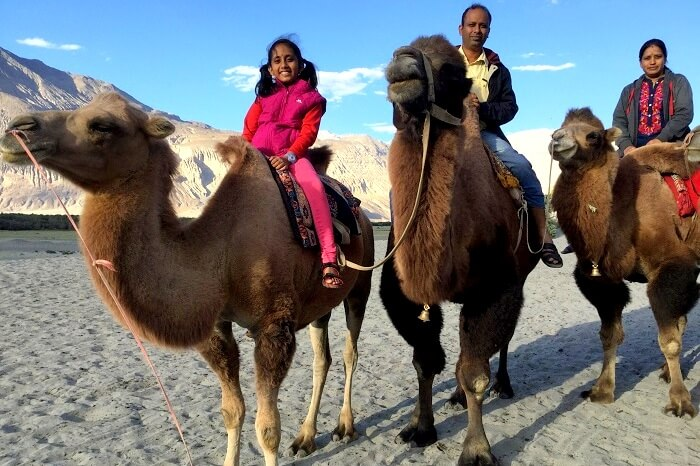 camel ride in nubra valley