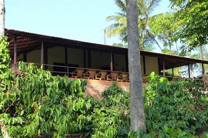 Karadigundi Estate Homestay