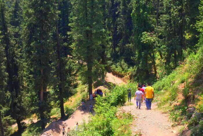 go trekking in Reserve Forest Sanctuary