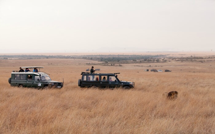 Tourists in a safari jeep in Masai Mara National Park in Kenya v