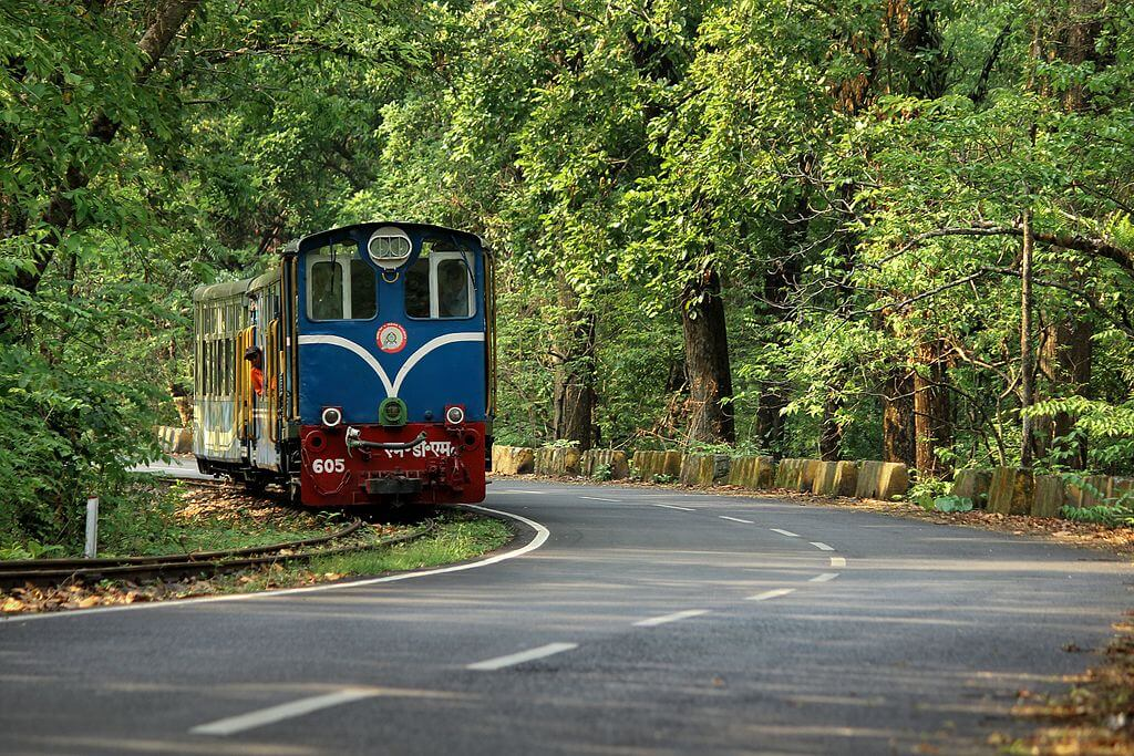 ToyTrainofDarjeelinghoneymoon