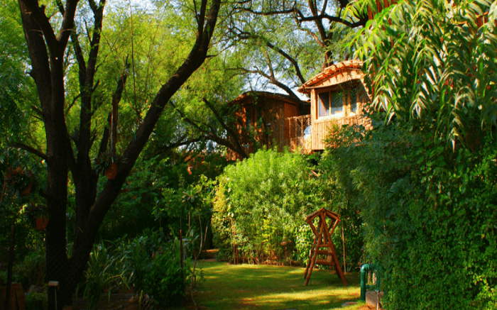 Treehouse cottages of Treehouse Jaipur in Rajasthan