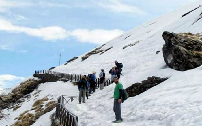 Trekkers on their way to Chandrashila Peak near Chopta in Uttarakhand