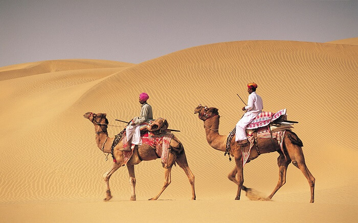 Two men on camelback in desert, Jaiselmer,