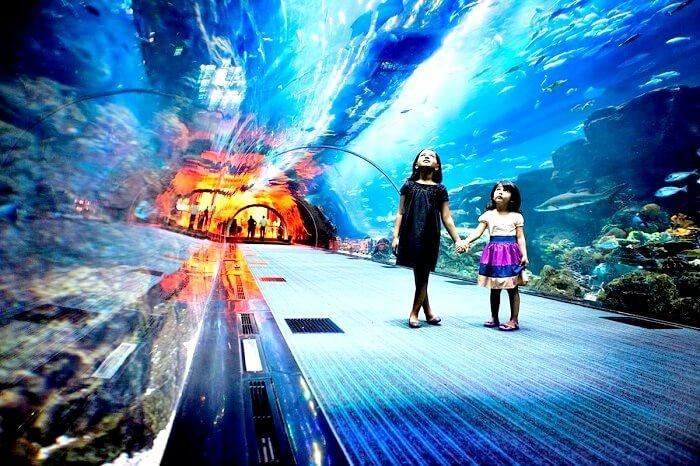 Aquarium Underwater Zoo Dubai