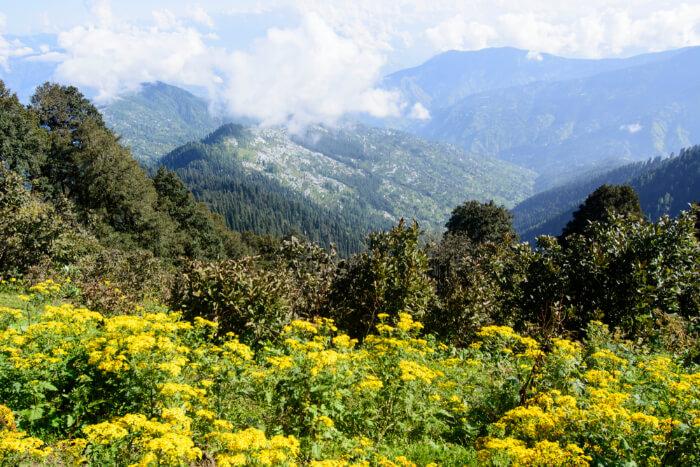 Outstanding Hatu Peak