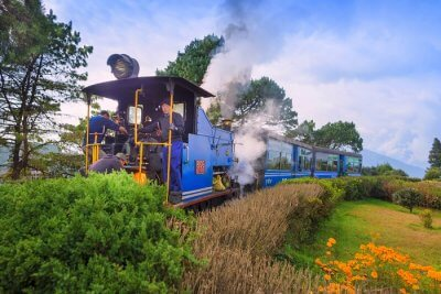 enjoy a trip to darjeeling in december