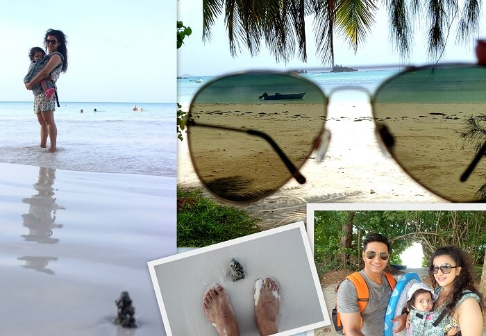 cot dor beach seychelles
