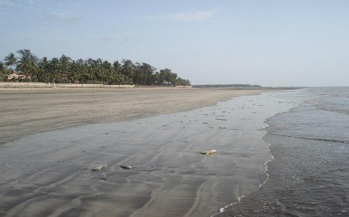 sea waves on a beach