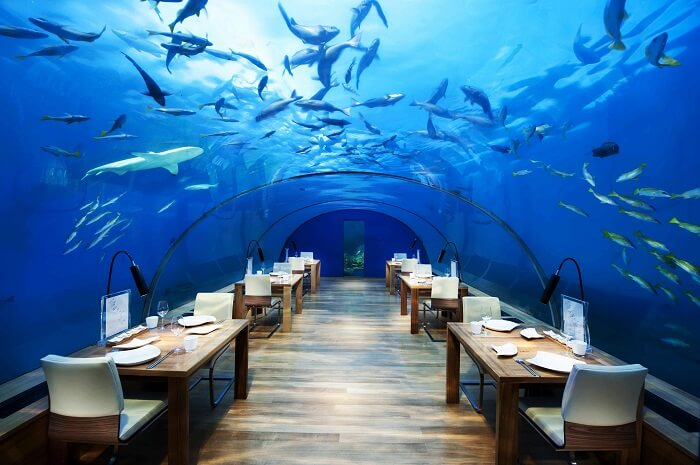Ithaa Underwater Aquarium Restaurant