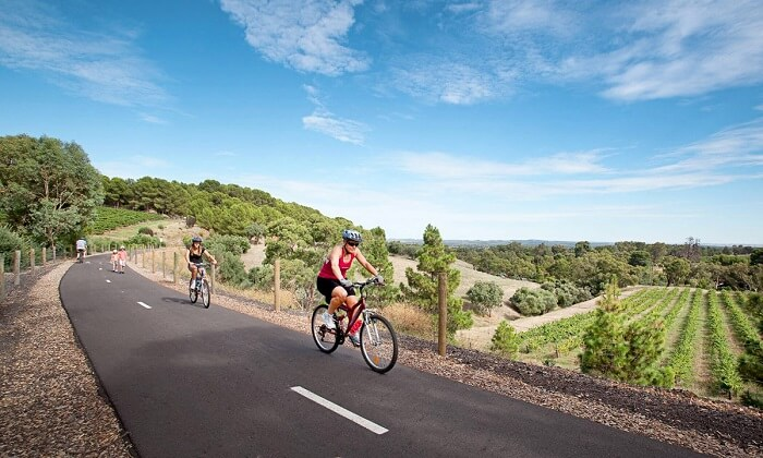 famous Barossa Cycle Tours