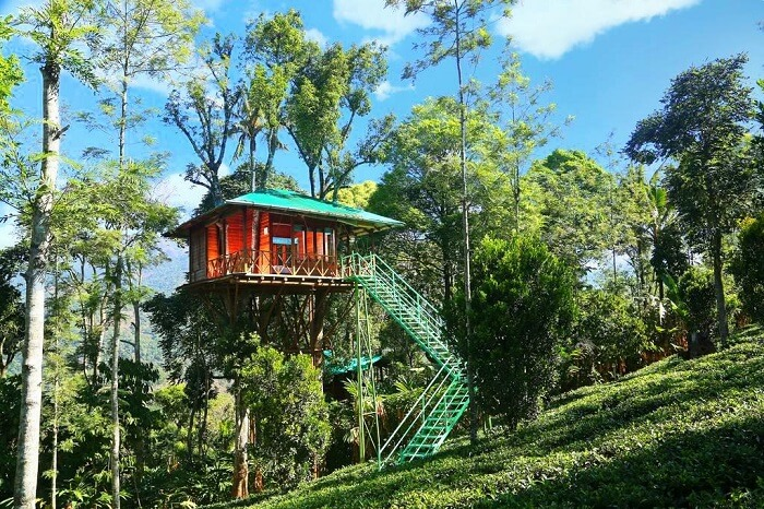 tree house resorts in Kerala
