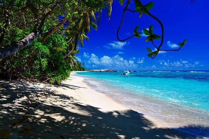Anse Forbans beach in Mahe