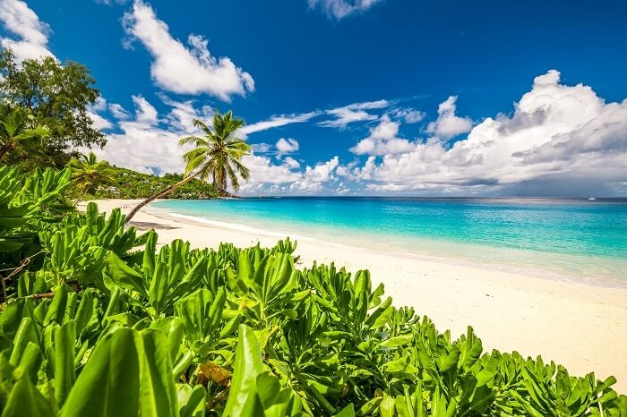 Anse Intendance beach in Mahe