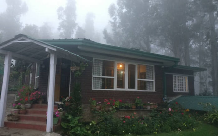 A beautiful cottage in a misty forest